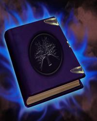 book монеты царствования